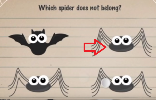 moron-test-tricky-treat-walkthrough-which-spider-does-not-belong